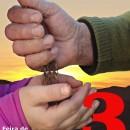 Domingo 14 de Abril: Feira de sementes en Leboso (Forcarei). Non faltedes !!!