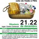 Xornadas sobre resíduos en Ribadavia